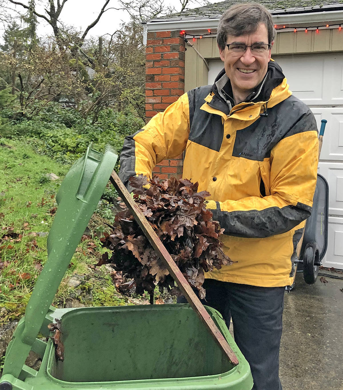 Oak Bay Coun. Eric Zhelka scoops excess leaves into his kitchen waste bin. The District of Oak Bay's contract for kitchen waste pickup now permits the inclusion of general yard waste. (Travis Paterson/News Staff)